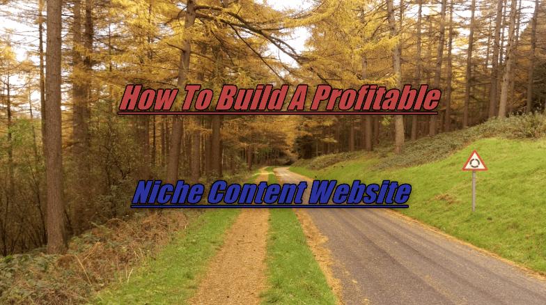 Niche Content Website